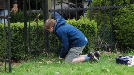 Ook langs het hek wordt onkruid gewied